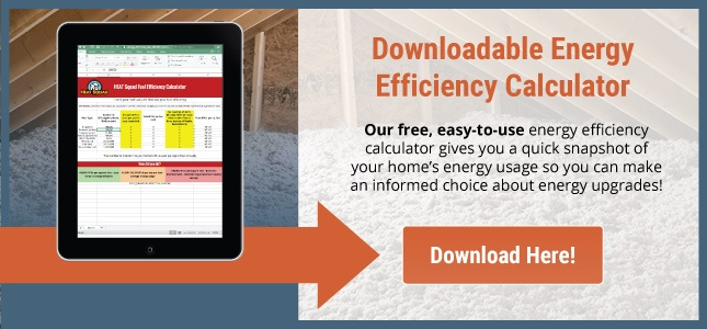 Downloadable Energy Efficiency Calculator